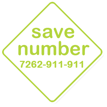 Save the number